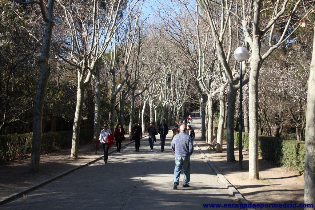 paseo de entrada al parque