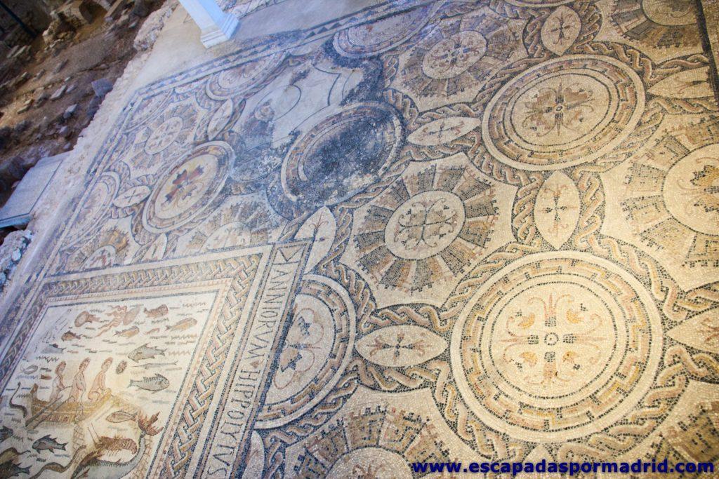 foto del Mosaico del Patio