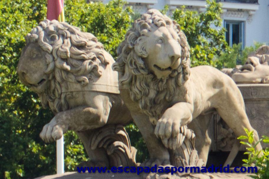 foto de Atalanta e Hipómenes