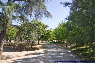 foto de Parque de Madrid Río